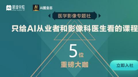AI医学影像专题系列 5大课程